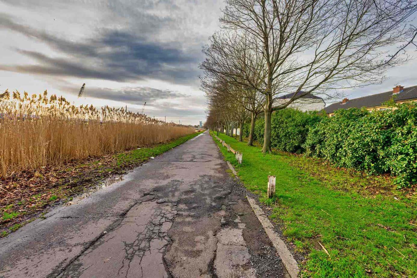 GOLDENBRIDGE-WALK-ALONG-THE-GRAND-CANAL-DRIMNAGH-INCHICORE-159052-1